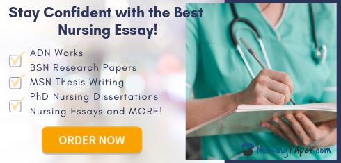 reliable nursing essay help