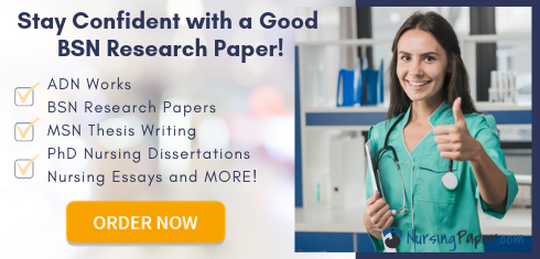 professional bsn research writing services